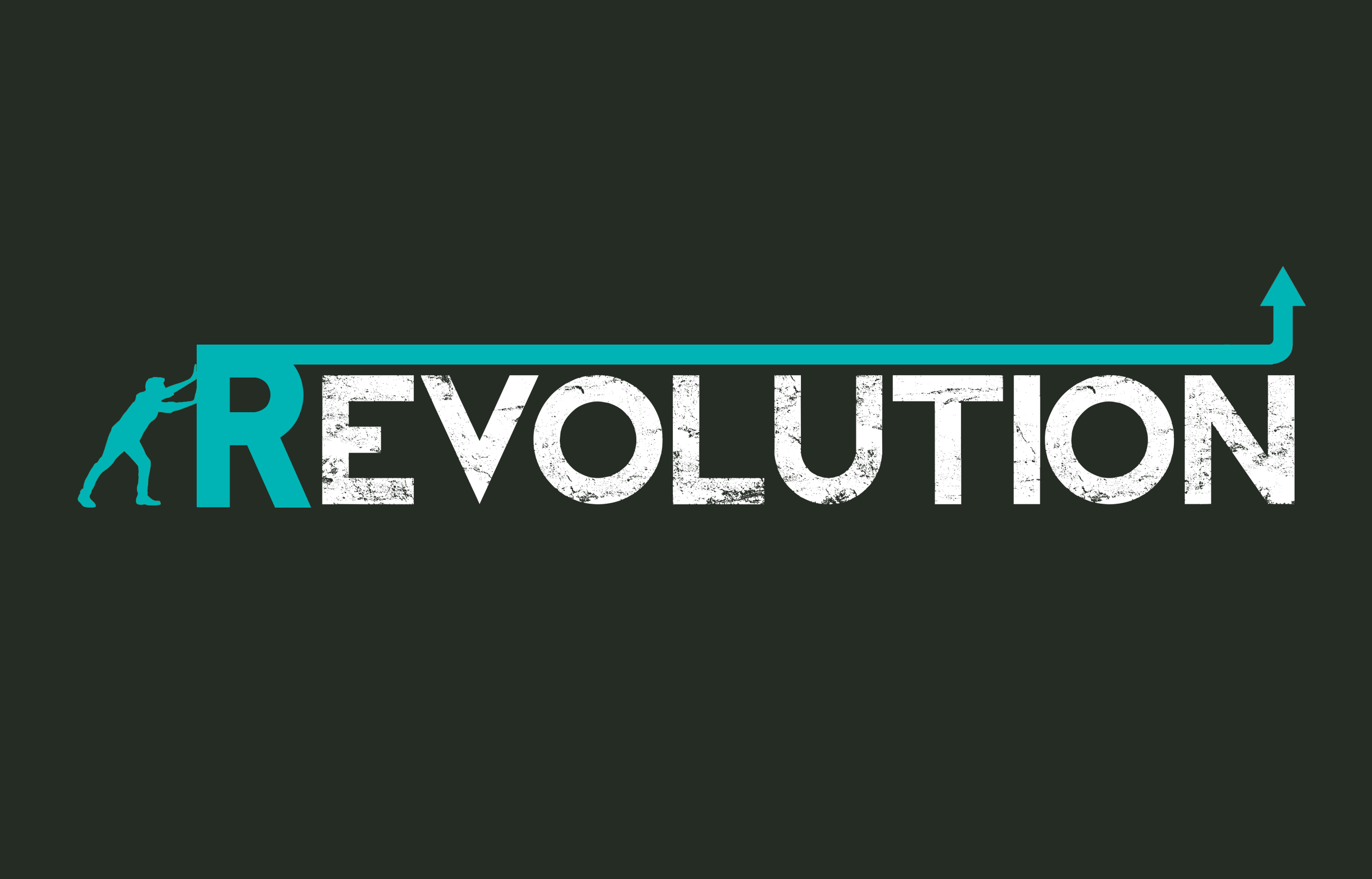 revolution versus evolution essay What is the difference between evolution and revolution evolution refers to a slow and gradual change revolution refers to a sudden and dramatic change.