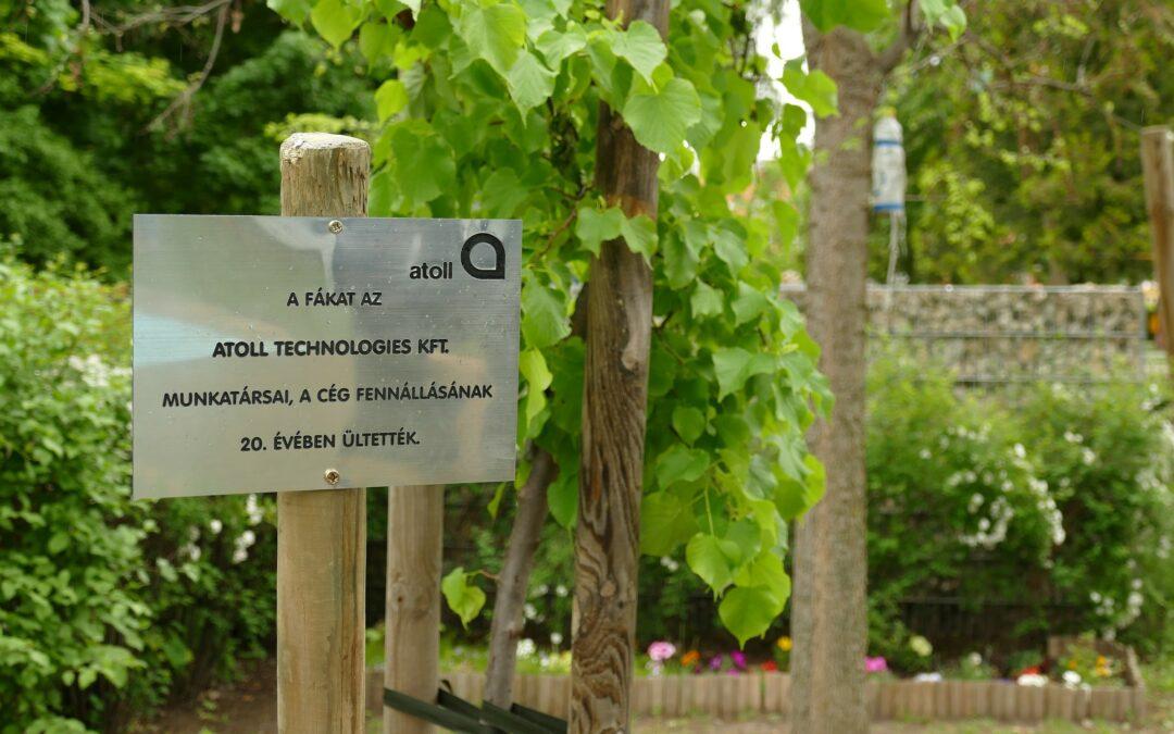 Fákat ültettünk a Homoktövis Bölcsőde udvarára